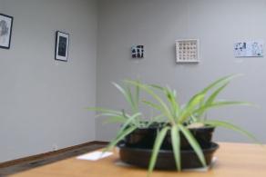 Plant Life, 2019